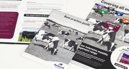 The Finishing Post Design & Marketing Consultants, advertising agency Suffolk, Bury St Edmunds, East Anglia.