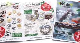 Direct mail design, advertising agency Suffolk