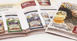 brochure design suffolk