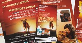 marketing for veterinary industry