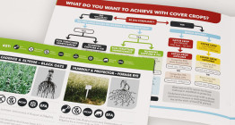 Brochure design for agronomy services company Agrii