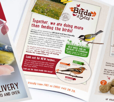 Direct mail catalogue design for Birds & Bees