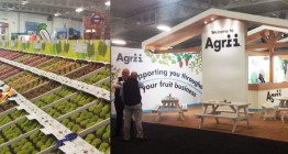 Exhibition stand design for Agrii Fruit Show - The Finishing Post Design & Marketing Consultants, design agency Suffolk, East Anglia, Bury St Edmunds.