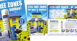 design and marketing for veterinary industry