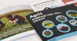 brochure design East Anglia