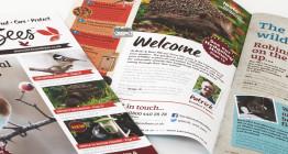 Birds & Bees catalogue brochure design