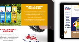 digital marketing Suffolk