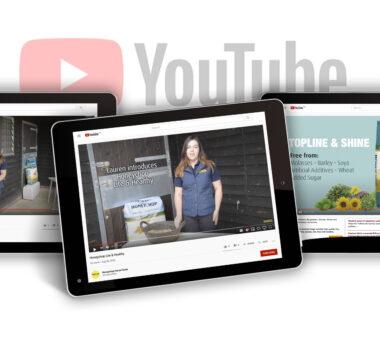 Honeychop product launch videos